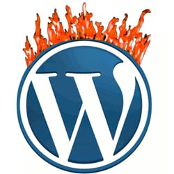 wordpress-vulnerability-fire